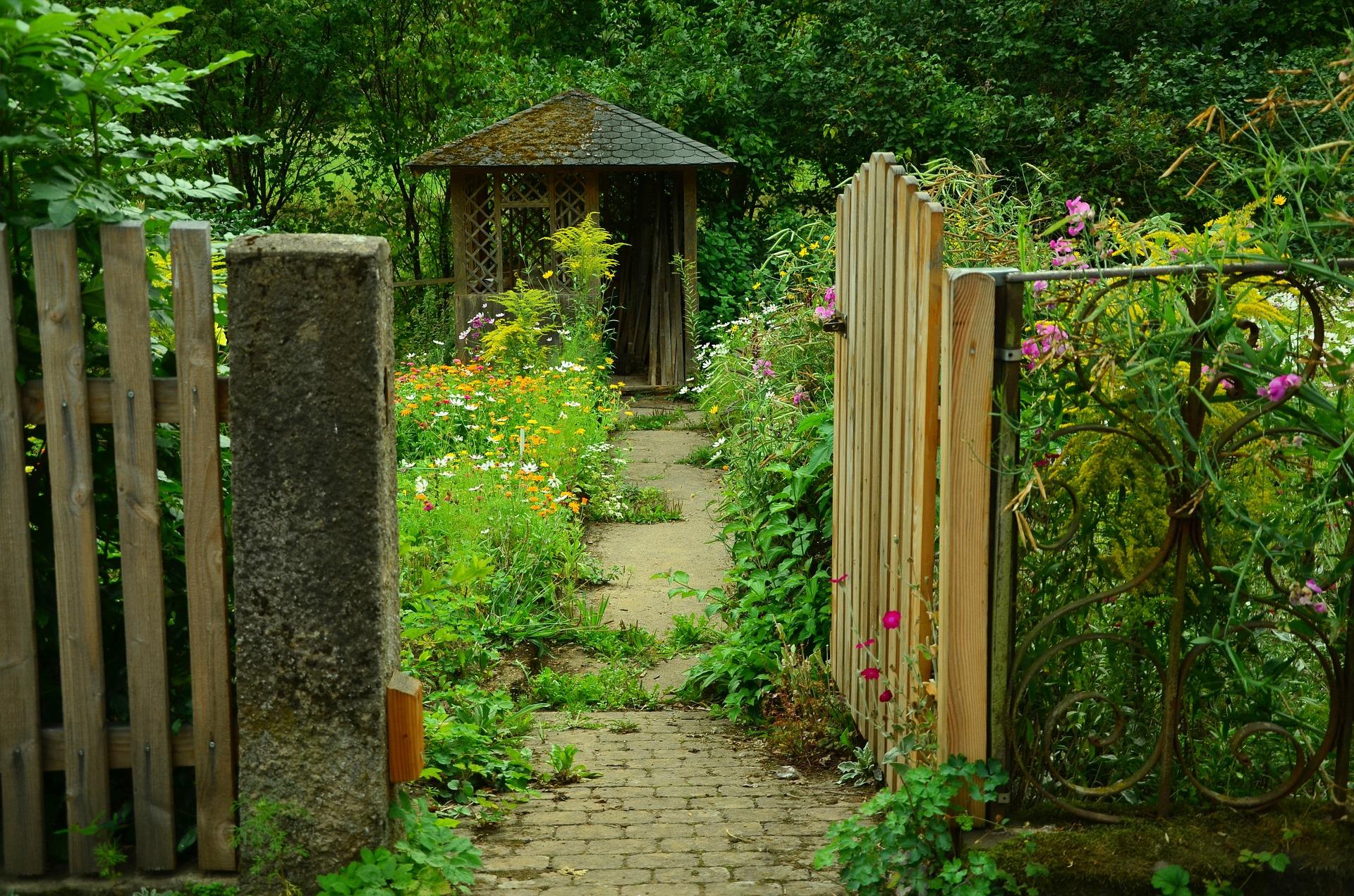 jardinsilvestre_izal