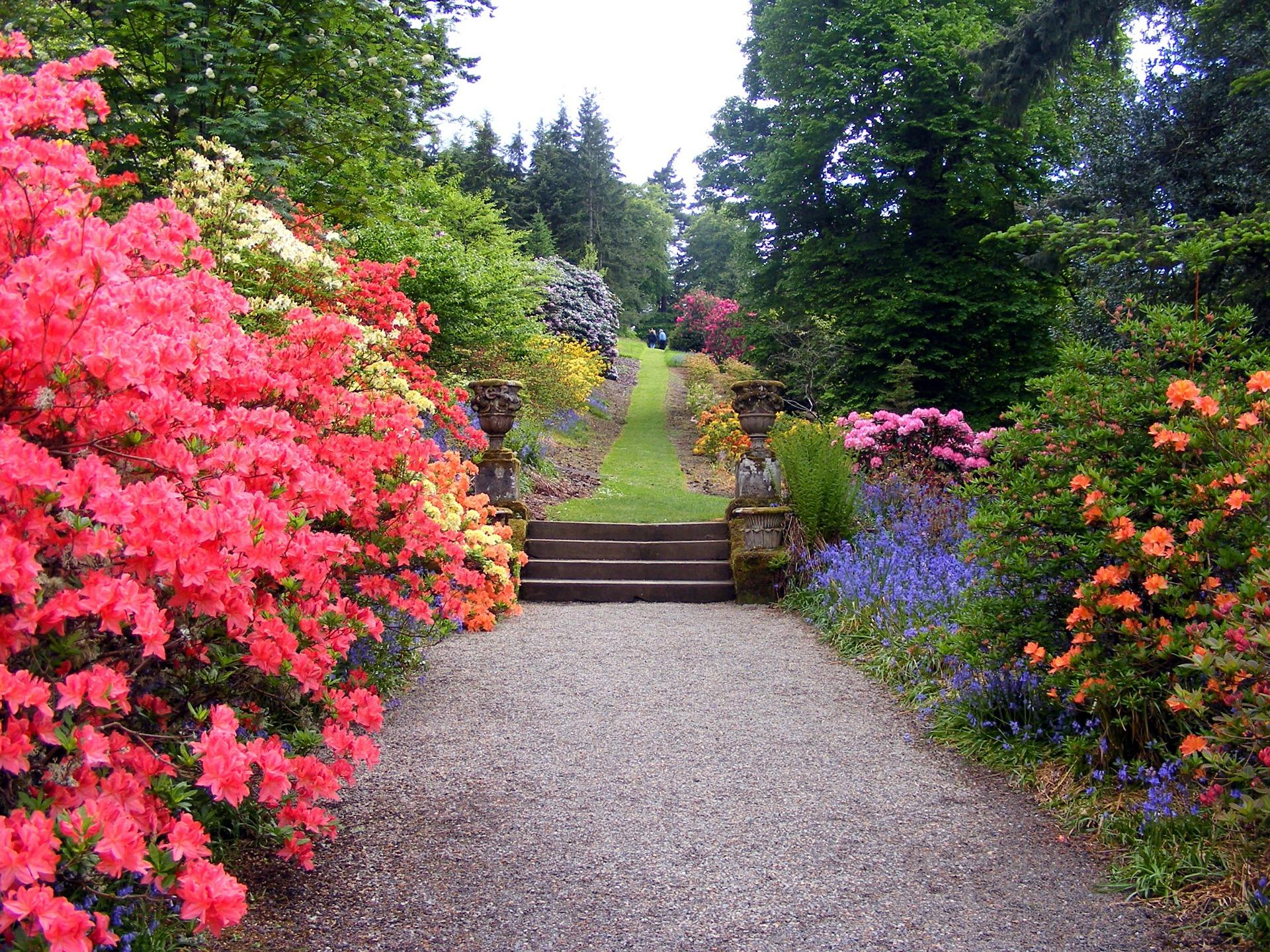 Crea ambientes en tu jardín