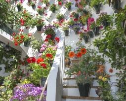 Jardines que inspiran