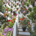jardinvertical_izal