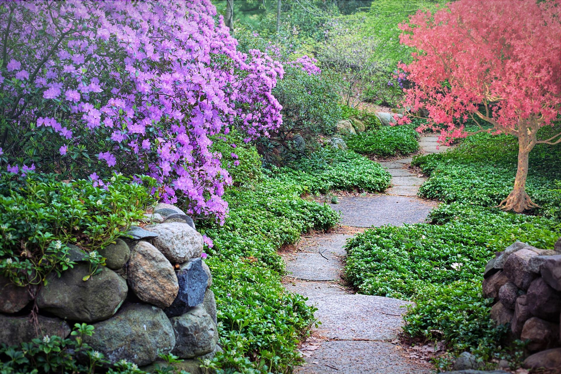 Senderos en el jardín